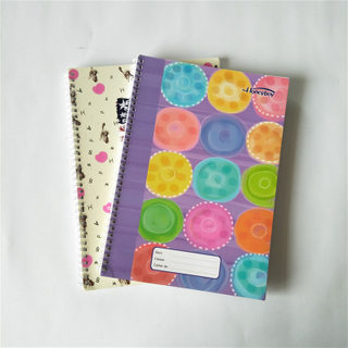 Best Selling Beautiful Designs A4 Size Double Spiral Notebook SN-5